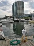 Boston Waterfront Fan Pier Boston - Photo via: Media Crush LLC